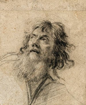Simon Vouet - The Head of a bearded Man, looking up to the left